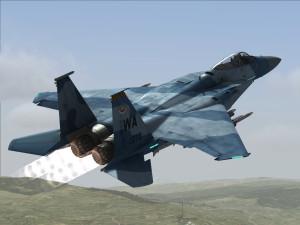 DCS_F15