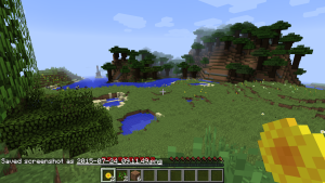 Minecraft01